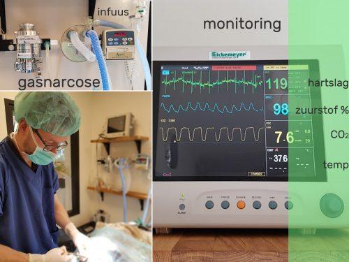 monitoring_bewerkt-1